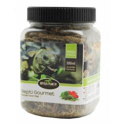 Reptiles-Planet repti gourmet tortoise juvenil