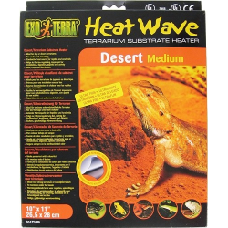 Heat Wave Desert