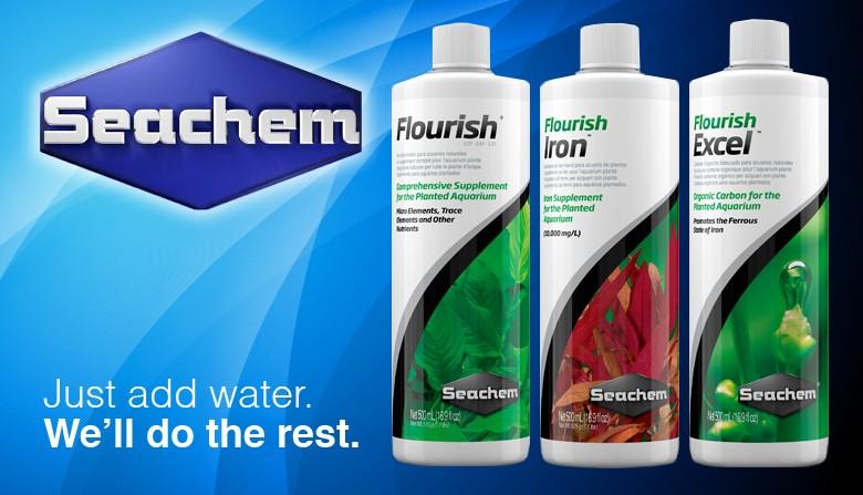 Seachem- Um dos melhores fabricantes de produtos para aquariofilia