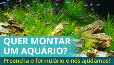 Orçamentos para montar um aquário!
